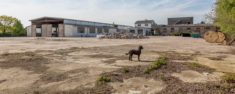 Menk Umwelttechnik: Das Gelände wird neu aufgeteilt