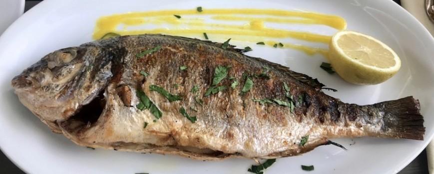 Die richtige Zubereitung: Fisch auf dem Grill … so wird´s lecker