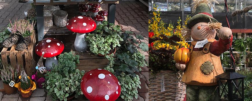 Der Herbst ist da: Gartendeko-Ausstellung im hagebaumarkt Langenfeld